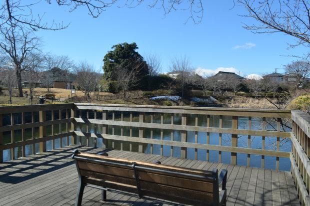 今泉名水桜公園/駅近で一年中桜が楽しめる