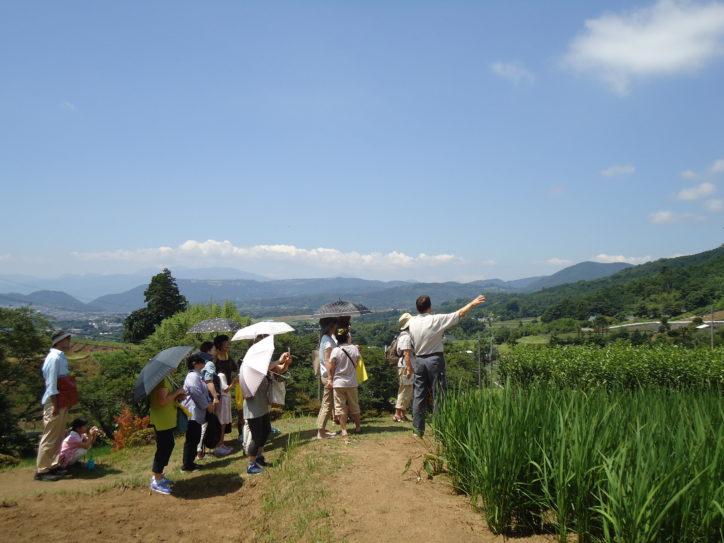 秦野産「山の幸」&相模湾「海の幸」楽しむバスツアー!富士の絶景、大日堂で閻魔詣も体験