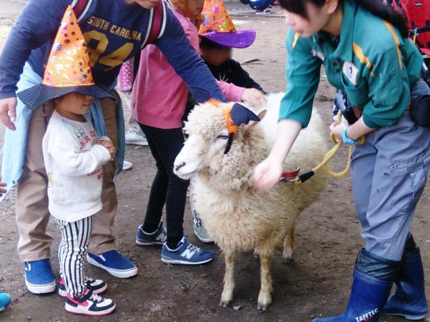 ハロウィンは金沢動物園へ仮装してGO!!動物たちと一緒にパレードも!【横浜市金沢区】