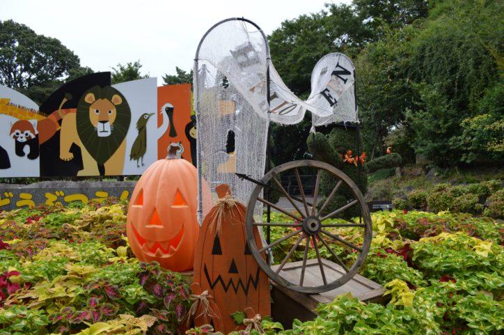 野毛山動物園でハロウィン限定オリジナルキャンディーをもらおう!10月は無休で開園【横浜市西区】