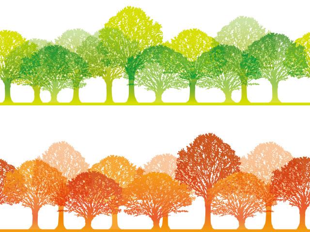 【参加者募集】高石特別緑地で里山整備・クズ蔓の除去など