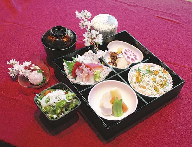 鎌倉五條の3月限定メニュー 旬の魚と春を楽しむ「桜弁当」