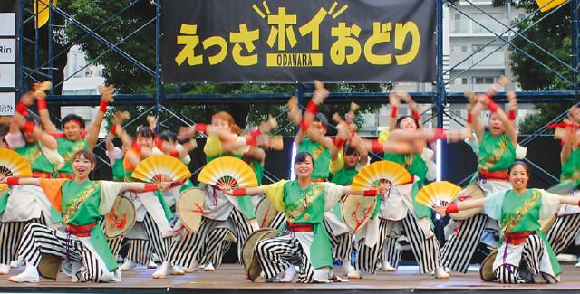 小田原・秋の風物詩「ODAWARAえっさホイおどり」で色鮮やかに舞い踊る!9月16日(土)17日(日)開催