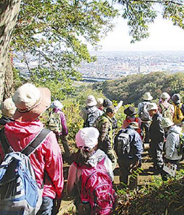 秋の紅葉「ハイキング」参加無料!11月26日開催@いせはら塔の山緑地公園(伊勢原市)