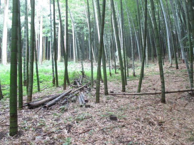 明治大学黒川農場(川崎麻生区)で「竹炭シンポジウムin 川崎」開催。森再生のための知恵を学ぼう