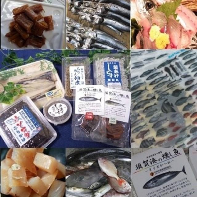 泳いだ魚に出会え、活きた魚が買える 平塚新港で「地どれ魚」直売会