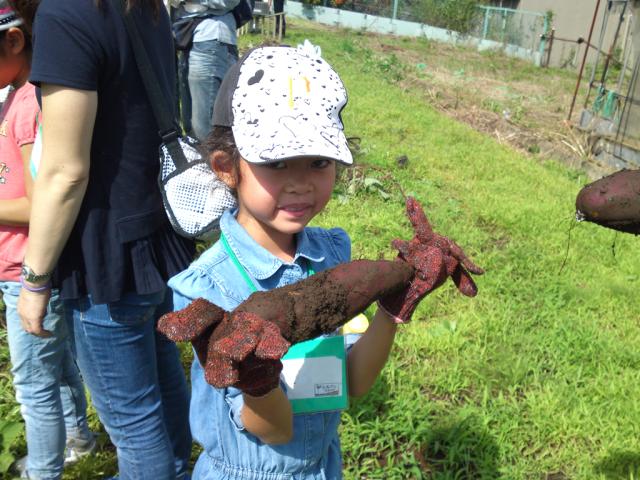 ≪第1弾≫川崎市高津区で「秋の子どもプチ農体験」。たちばな野菜の料理試食つき!