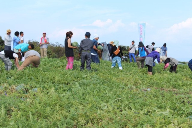 三浦市のベテラン農家と出会う婚活ツアー『アグリde恋来』!7月28日(金)まで参加者募集中