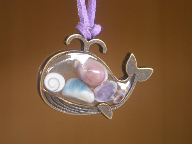 UVレジンを使った貝殻アクセサリーづくり ~貝とクジラのおはなし~