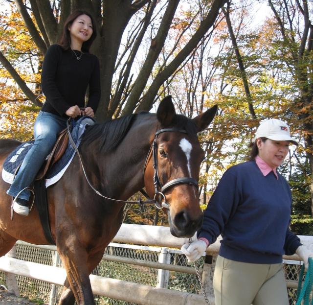 馬とのふれあいなど無料で丸一日楽しめる!特別イベント「馬とあそぼうこどもの日」【5月5日@馬の博物館(横浜市中区)】