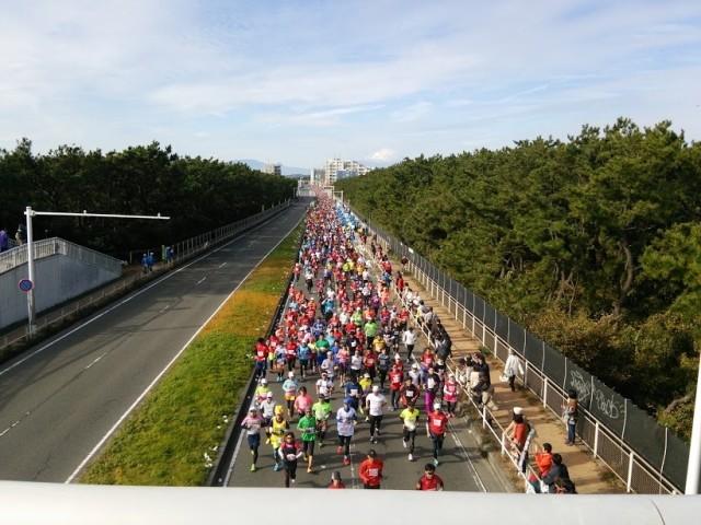 【2018年1月28日(日)】「第8回湘南藤沢市民マラソン」ランナー募集
