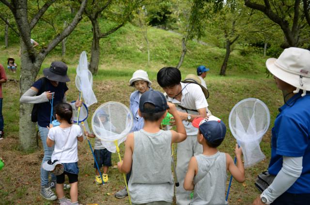 夏休み「親子で昆虫観察会」参加無料!8月11日開催@県立塚山公園(横須賀市)