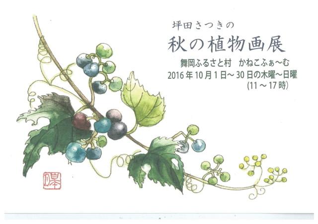 「坪田さつきの秋の植物画展」。舞岡ふるさと村かねこふぁ~む喫茶あとりえ(横浜戸塚)で開催