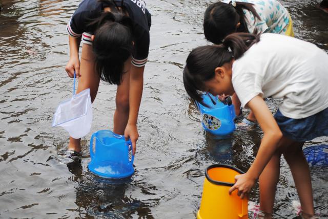 横須賀エコツアー~前田川の水の生き物観察会~