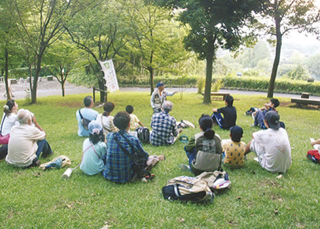 夕方の自然の変化を体感しよう!「ネイチャーゲーム」イベント7月22日(土)開催@座間谷戸山公園