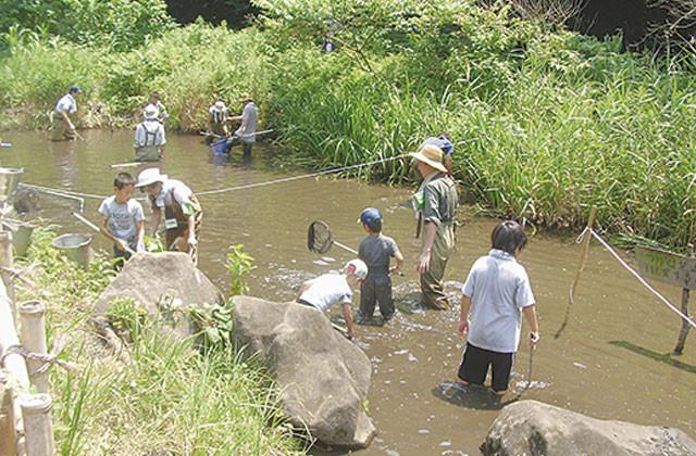 親子で生き物さがし「水の生き物みっけ」@神奈川県立座間谷戸山公園