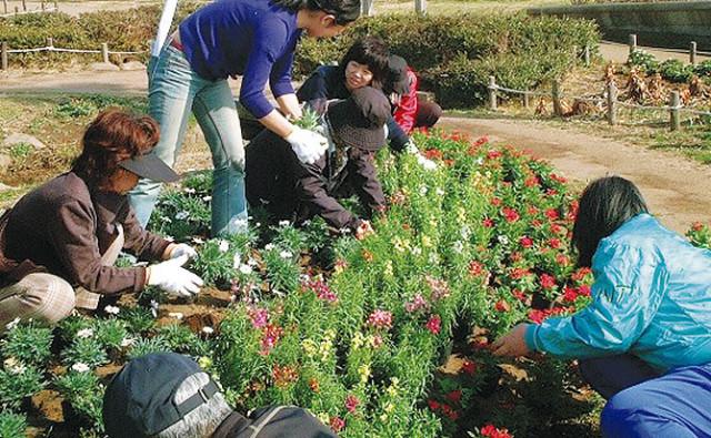 県公園協会が花苗を無料配布 緑化活動の支援に