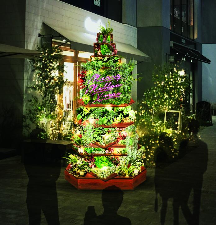 『マリン&ウォーク 横浜』のクリスマスは「グリーン」が主役!心温まるひとときを