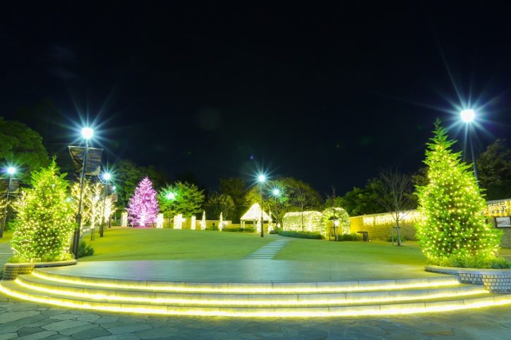 横浜元町と山手つなぐ「アメリカ山公園 」イルミ!マリンタワー背景のフォトスポットも