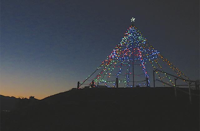 夕暮れ時に映えるイルミネーションツリー@県立相模三川公園「夕焼けの丘」