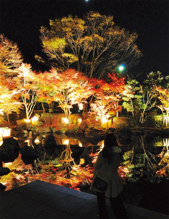 大磯城山公園で「もみじライトアップ」幻想的な竹灯籠や音楽会も