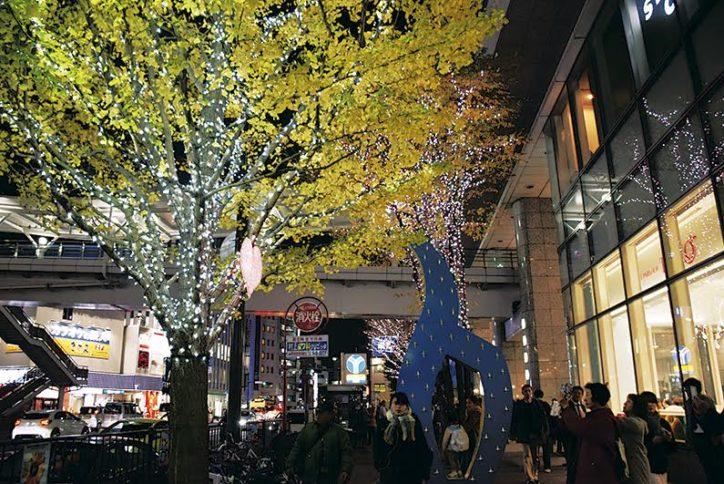 5万個のライトが木々を彩る「ゆめおおおかイルミネーション」(横浜・上大岡)