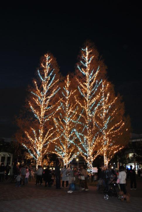 センター南駅前にシャンパンゴールドに輝くイルミ!2月いっぱい点灯@横浜市都筑区