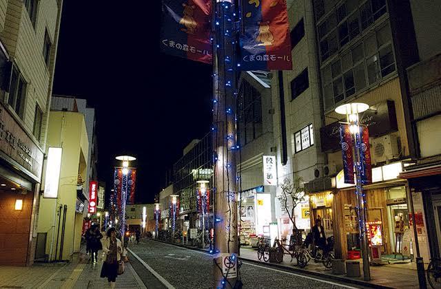 湘南ブルーの1万球が藤沢・辻堂の夜道彩る