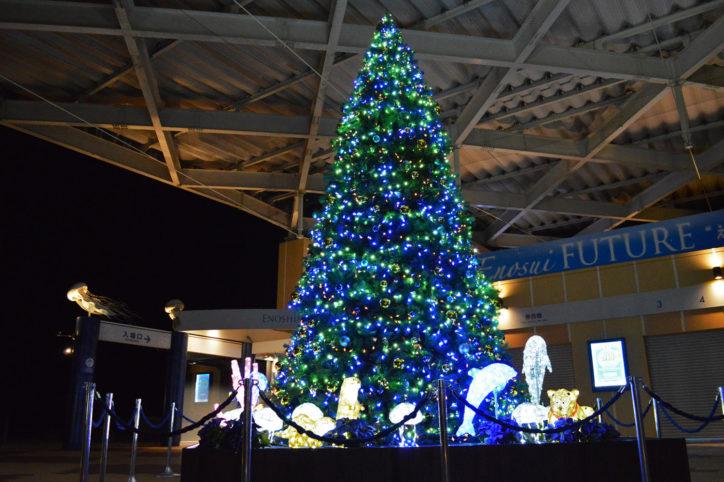 新江ノ島水族館「えのすいクリスマス」満天の星降る水族館に