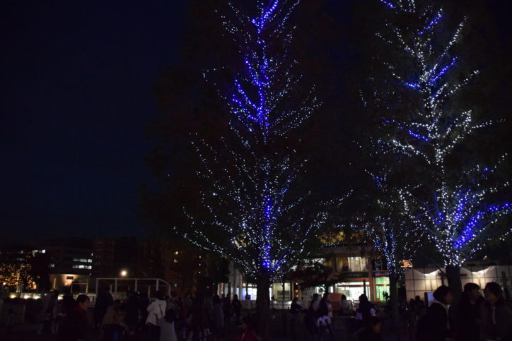 横浜・センター南駅前に輝くブルー&ホワイトイルミ 2月いっぱい点灯