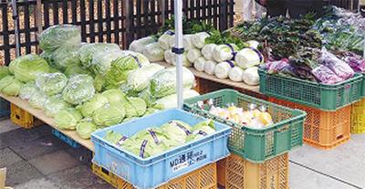 地元の新鮮野菜を販売「年末大野菜市」@小野路宿里山交流館