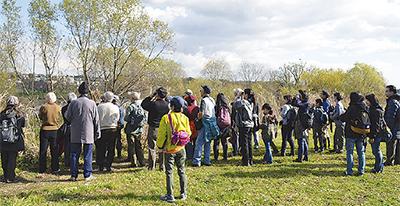 多摩川河川敷で野鳥を観察しよう