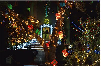 関東学院大学金沢八景キャンパスで「クリスマス・イルミネーションコンテスト」開催中