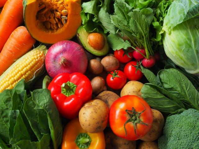 無農薬農家がとっておきの「野菜料理」伝授します!