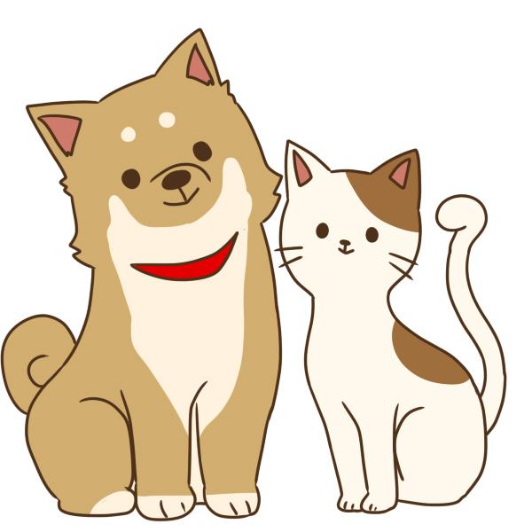 イヌとネコと飼い主さんの防災セミナー@秦野市立本町公民館