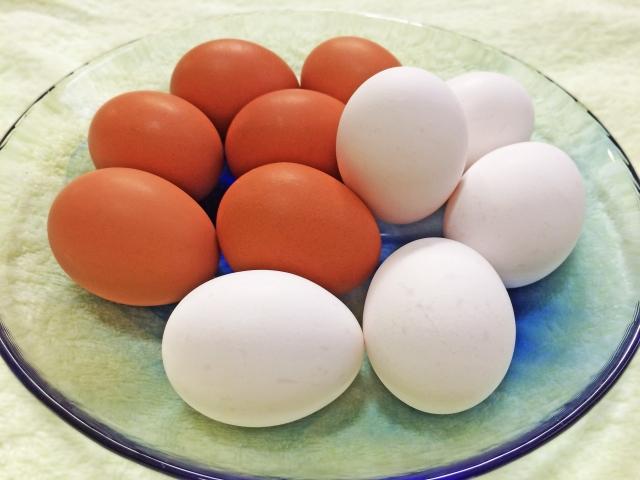 究極の「卵かけ○○」が食べられる!大山街道アクションフォーラム「たまごde大山街道」