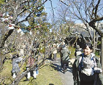 茅ヶ崎駅近くの観梅スポット「高砂緑地」2月11日は梅まつりも!