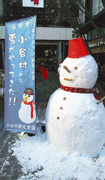 【1月21日限定】小谷村から雪遊びのプレゼント