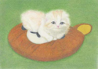 渡辺信子さん『子猫のソイとクリ』原画展