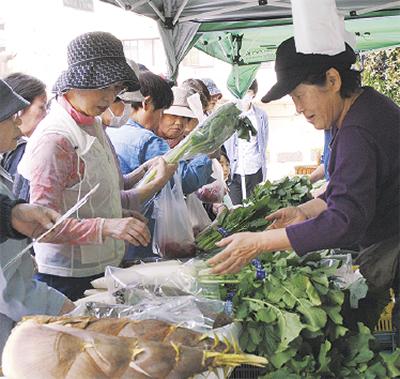 新鮮地場野菜が並ぶ「ほどがや朝市」