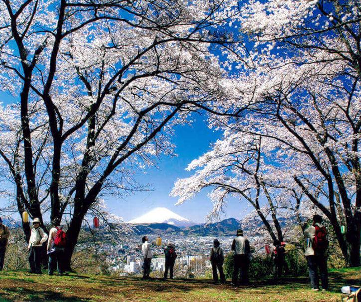 感動の絶景に出会える!アクティブな弘法山ハイキングコース