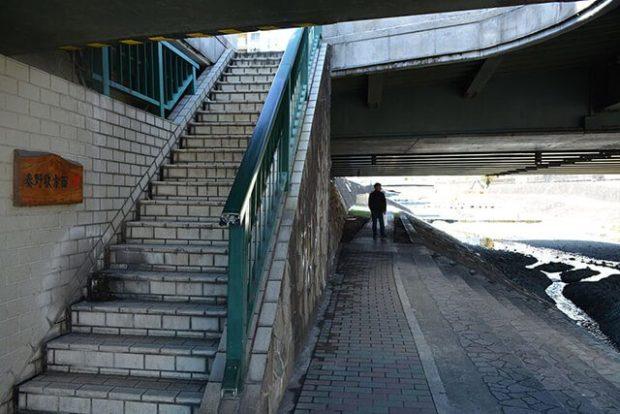 水無川/ベンチいっぱい のんびり川沿い散策