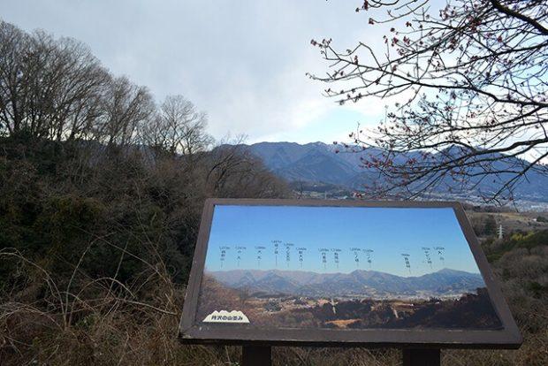 頭高山/都会の喧騒忘れる秦野の里山【標高303m】