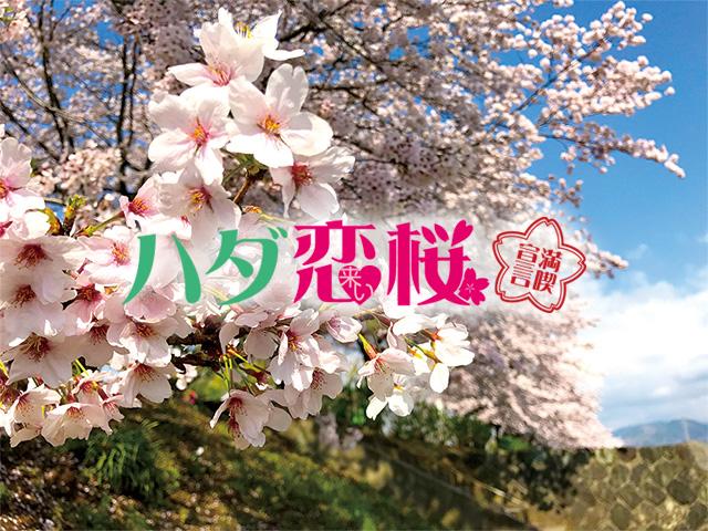 手型スタンプで桜製作