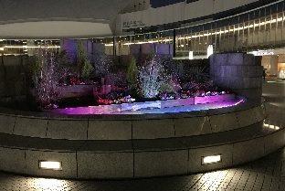 横浜港の夜景を楽しめる「パシフィコ横浜ウィンターイルミネーション2018」