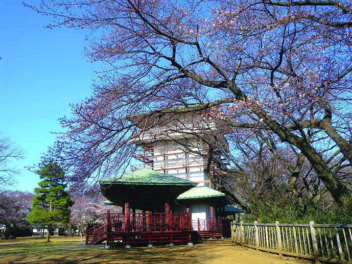桜や富士山の大パノラマ望む 川崎・枡形山広場展望台(生田緑地内)