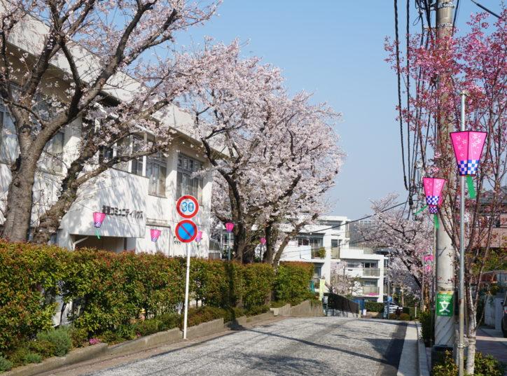 地区最大級の「港南桜まつり」パレードや模擬店も