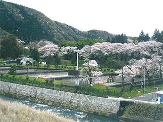 お花見@横須賀水道半原水源地跡地(愛川町)