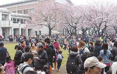 「第41回綾瀬市商工会青年部桜まつり」アンパンマンショーやフリマも