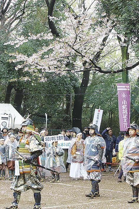 横浜の城郭で桜愛でる「小机城址市民の森」 4月15日は「小机城址まつり」で武者行列
